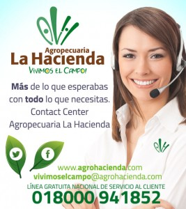 CONTACT-CENTER-ALH2