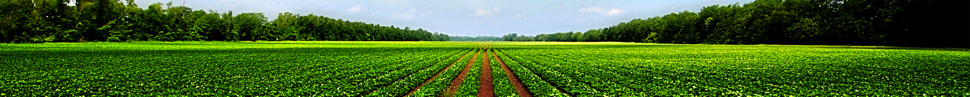 agricula_banner
